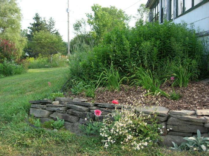Southwest corner of birthday garden
