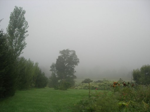 View of the opposite hill - Photo taken by Justin on September 7, 2006