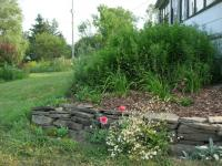 Southwest corner of birthday garden