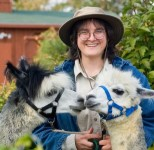 Image of woman with hat holding the reins on two alpacas