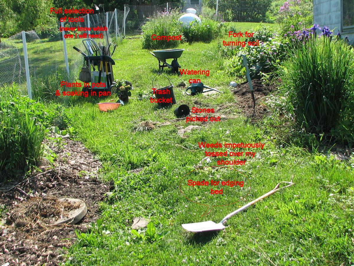 What A Garden Project In Progress Looks Like