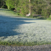 Thumbnail image for What's the Difference Between a Frost and a Freeze?