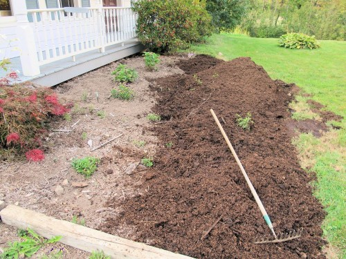 Well-rotted manure has been added to this garden bed.