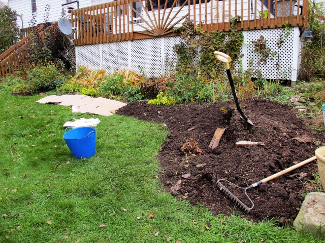 Expanding a garden bed with cardboard and mulch