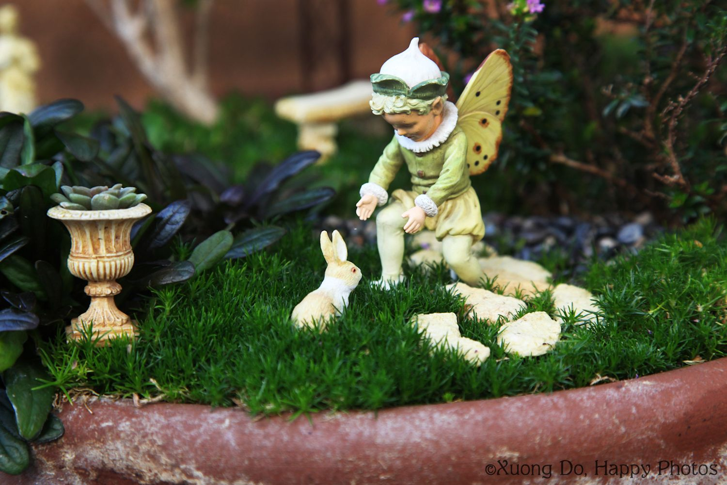 Fairy gardens preparing them for winter plus book giveaway Small garden fairies