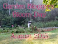 GBBD August 2015 featured image