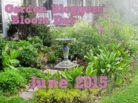 GBBD June 2015 featured image