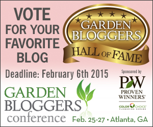 Click here to vote for best garden blog writer!