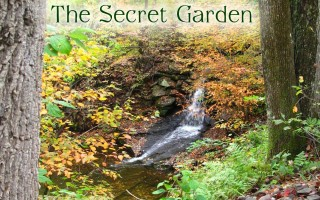 view of small waterfall in autumn - the making of the secret garden