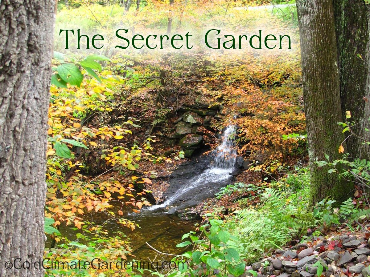The secret garden for The landscape gardener