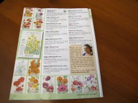 Kathy Purdy on p45 of 2014 Botanical Interests seed catalog