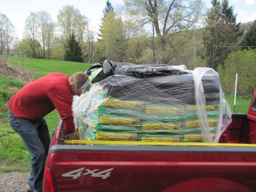 image of young man unloading bags of premium composted horse manure from a red pick up truck.
