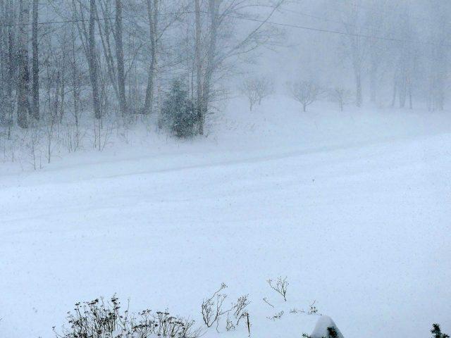 Stella snowstorm