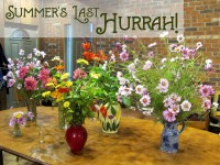 Summers Last Hurrah featured image