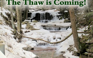 Thaw is coming
