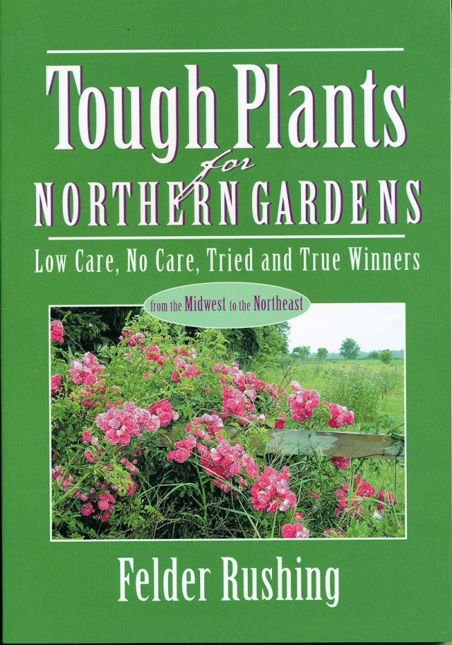 Tough Plants for Northern Gardens