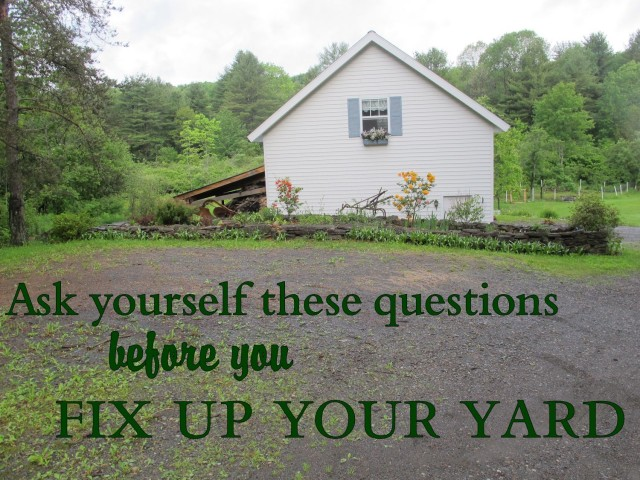 ask yourself these questions before you redesign your yard
