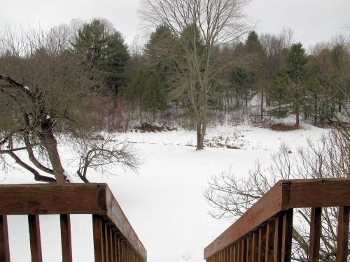 view of snowy backyard