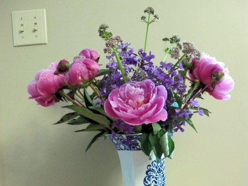 bouquet of peonies, dame's rocket, and valerian