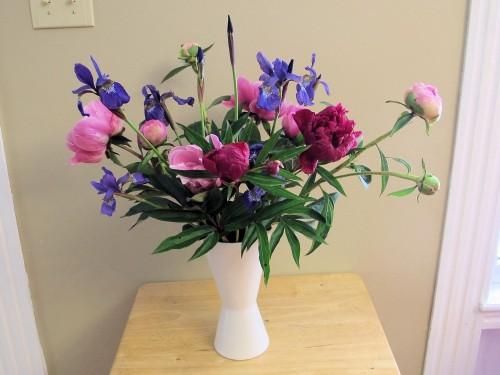 Siberian iris and peonies make a pleasing backyard bouquet