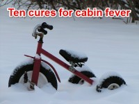 Ten cures for cabin fever