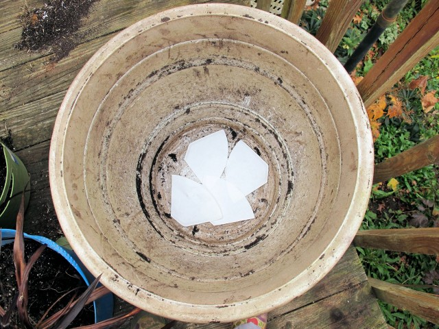 Coffee filters prevent potting mix from slipping out