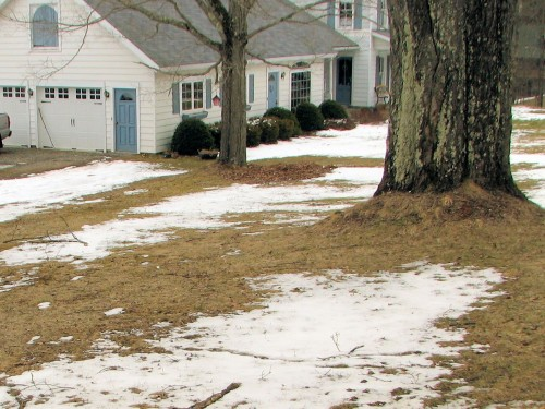 Yard with snow and bare patches