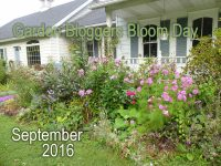 featured-image-gbbd-september-2016