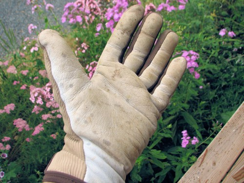 Goat skin palm of the Flex Gardener glove by Fields and Lane