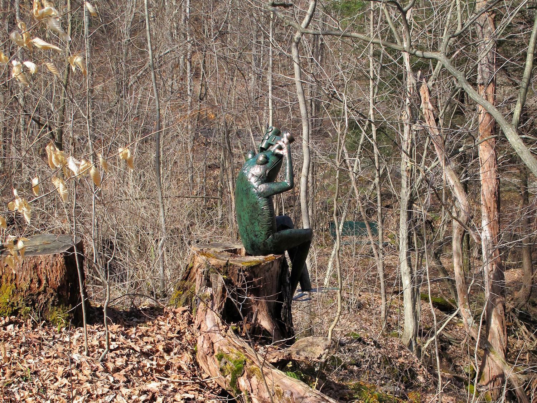 frog with binoculars metal sculpture