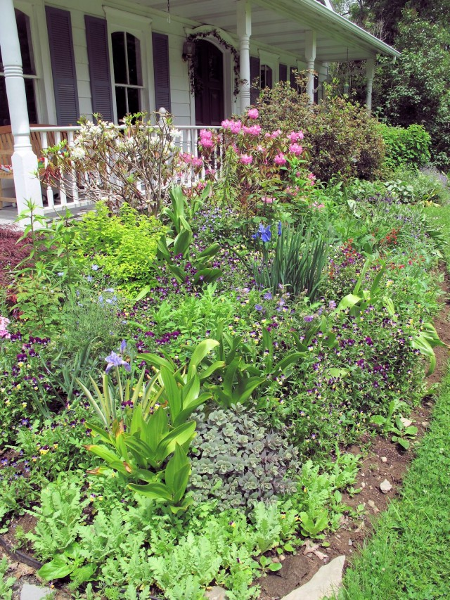 June flower bed in a cold climate