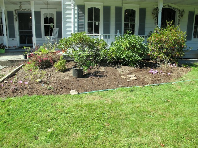 Newly created garden bed