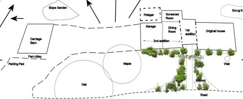 This was my original idea for garden beds lining the front walk. Drawing is not to scale, and don't expect the plants to be realistic. Click to enlarge.