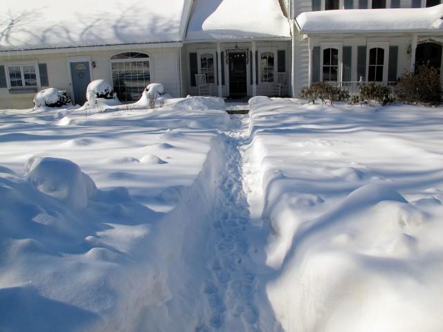 snowy front walk