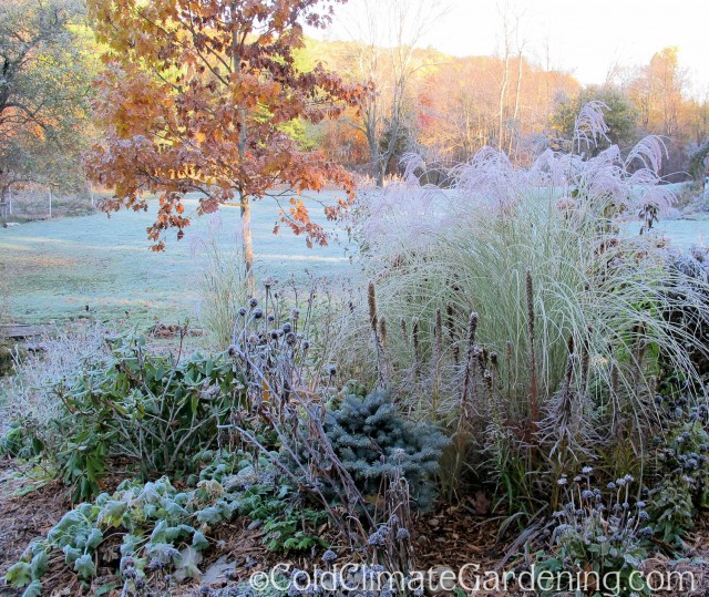 frosted slope garden