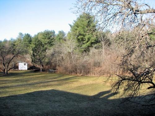 Frostless lawn