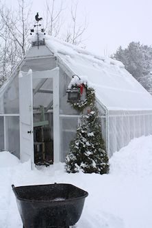 Neil Moran Christmas greenhouse in snow