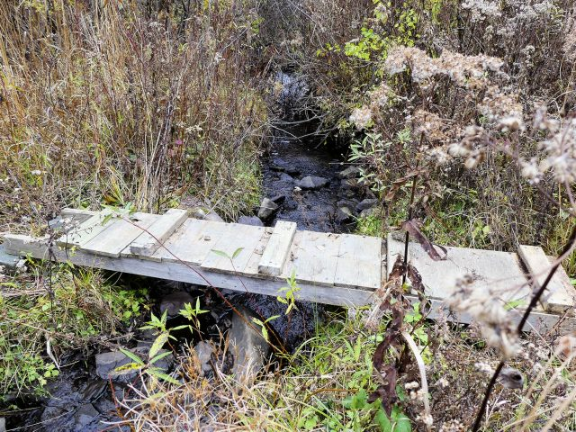rudimentary foot bridge across the creek