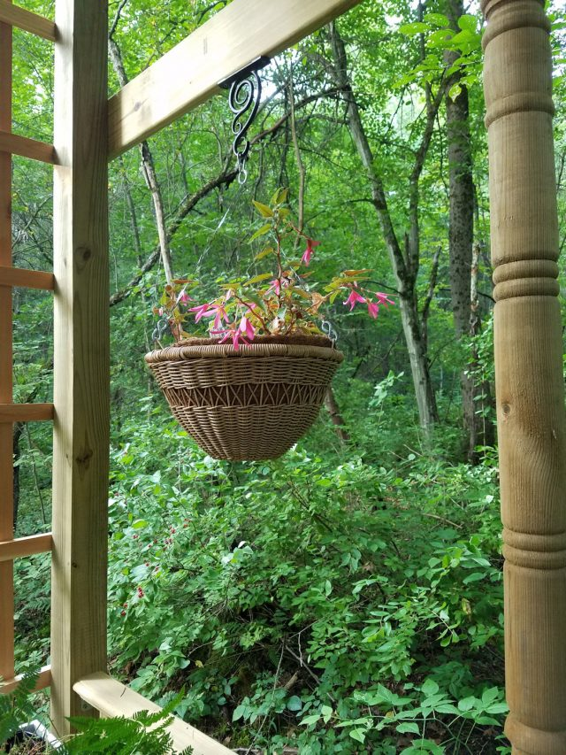 wicker hanging baskets in the garden shelter