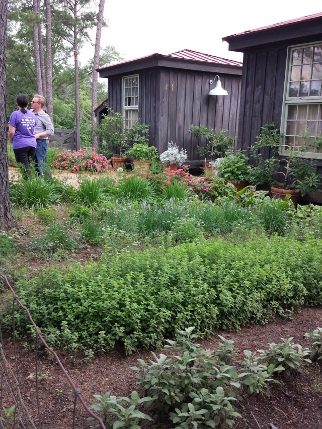 The herb garden at Moss Mountain Farm.