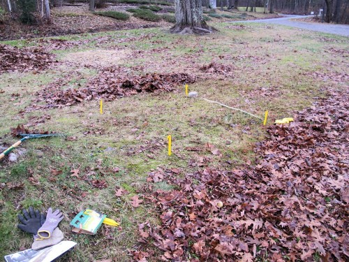 I put four tent stakes in the ground, outlining my best guess of 5ft by 5ft. Then I measured. I overestimated.