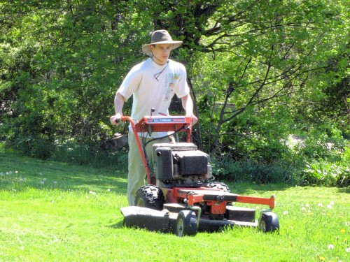 DR Brush Mower with Lawn Deck