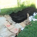 I used municipal compost 10/22/07