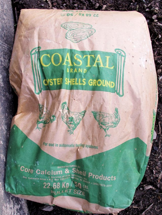 crushed oyster shell bag