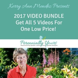 Click here to purchase the webinar bundle