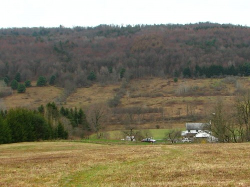 early spring hillside