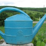 Rubbermaid watering can