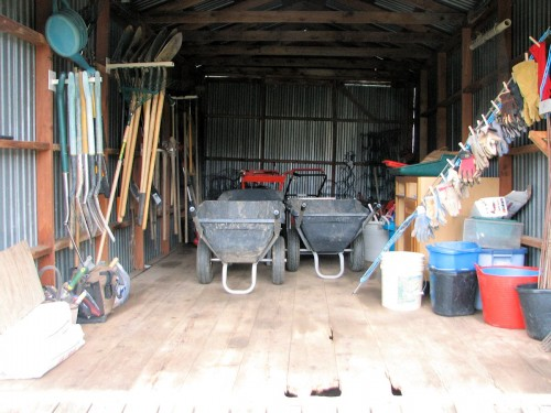 Organized tool shed with wheelbarrows in