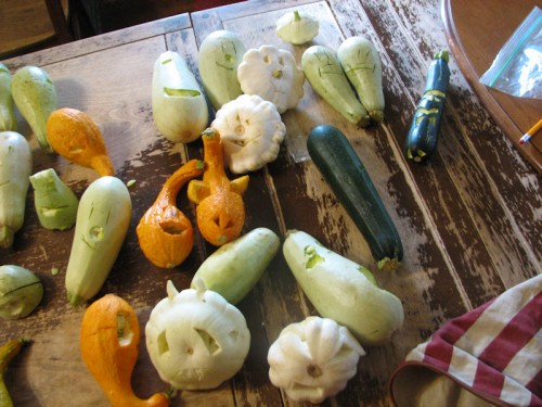 This is what you do with excess--especially overmature--summer squash.