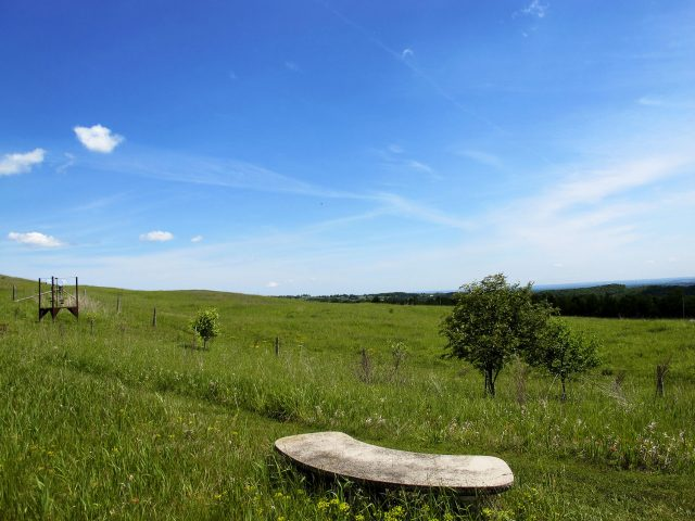 stupendous view at the edge of the Niagara escarpment on Lilactree Farm